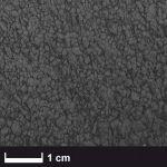 Carbon fibre milled 0,2 mm, sack/ 100 g