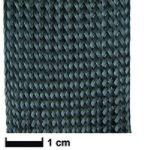 Calza in carbonio diam.25  L=1 metro.